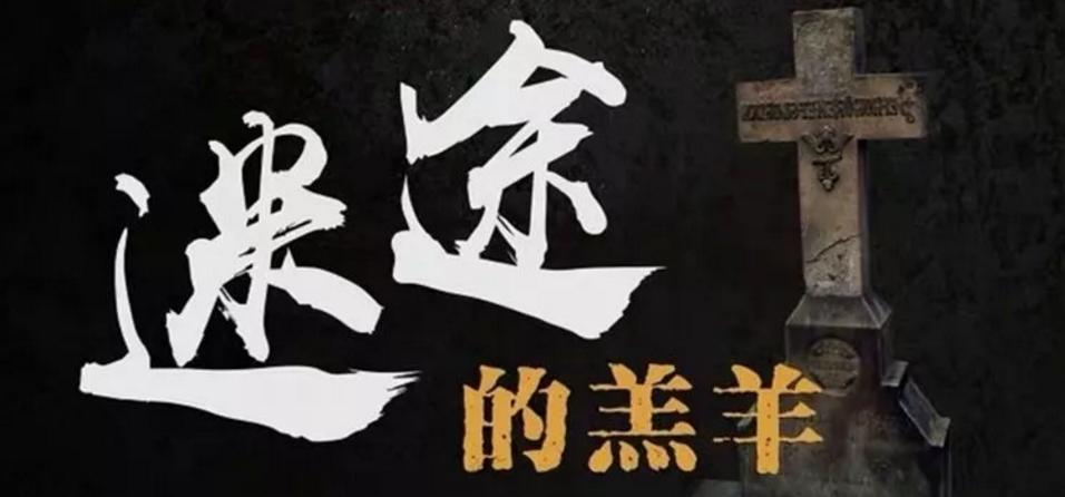 《迷途的羔羊》剧本杀复盘凶手评测角色剧情介绍